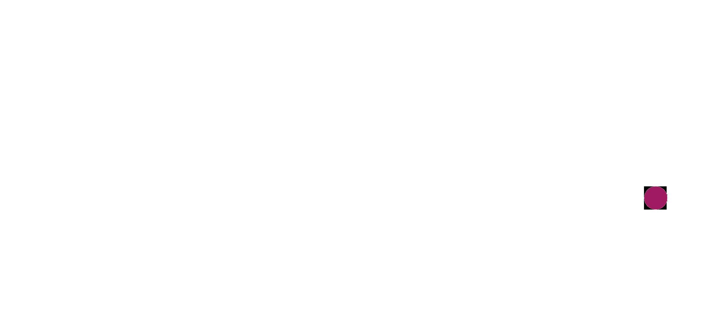 AI-REDUCI-logo_bianco